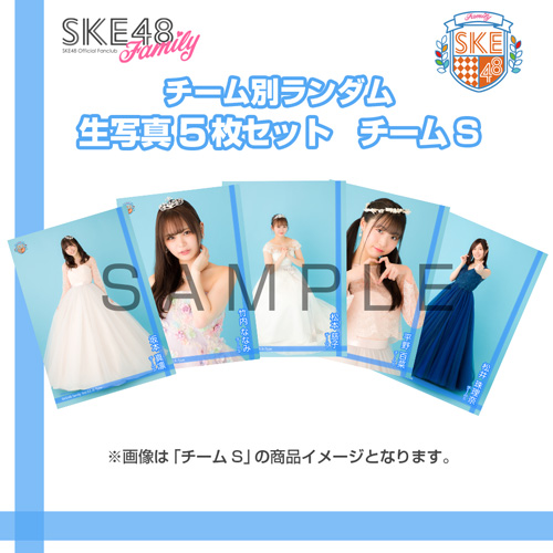 【SKE48 Family会員限定】 Vol.03 A-Type チーム別ランダム生写真セット チームS