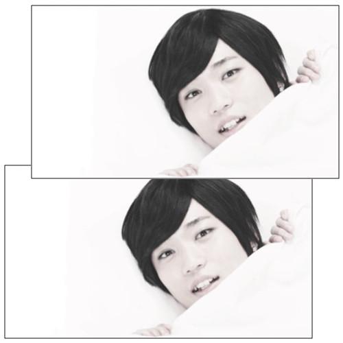 【アルスマグナ】FC限定「朴ウィト」枕カバー 2枚組1セット