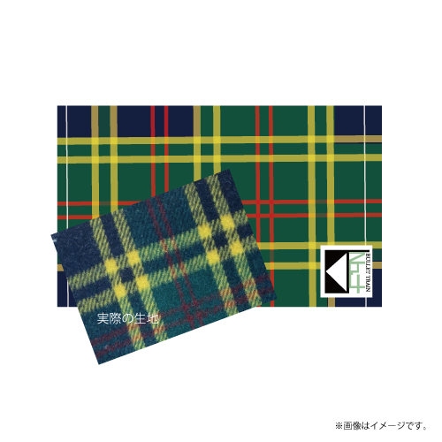 [超特急]Superstar Big Blanket(緑)