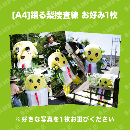 [A4] 踊る梨捜査線 お好み1枚