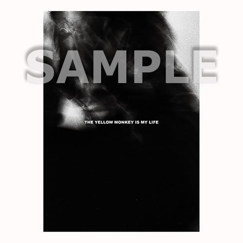 BELIEVER.限定ドームツアーパンフレット(Art Book仕様)