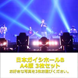 A4 3枚 Bセット(日本ガイシホール)