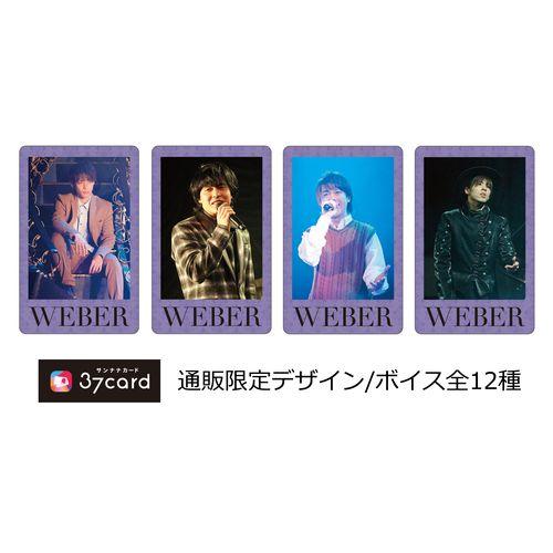 【WEBER】37card