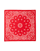 Bandanna Numbering79 Red