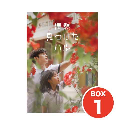 偶然見つけたハル【DVD-BOX1】
