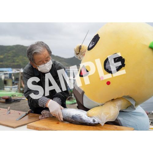ふなのみくす7 ~ナッシーバカンス高知篇~ L版5枚セットNO.10 メイン