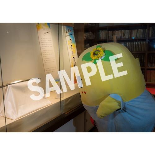 ふなのみくす7 ~ナッシーバカンス高知篇~ L版5枚セットNO.9 メイン