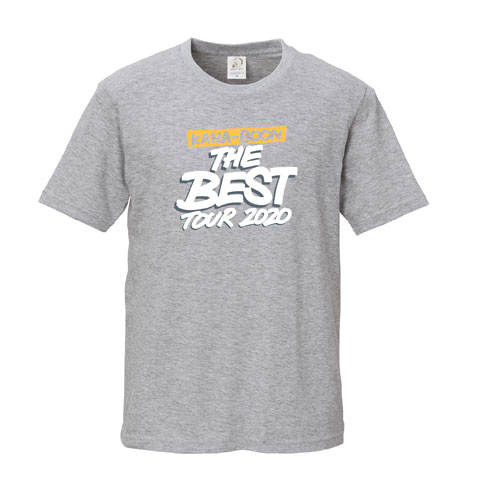 KANA-BOON THE BEST TOUR 2020 ロゴTシャツ/グレー