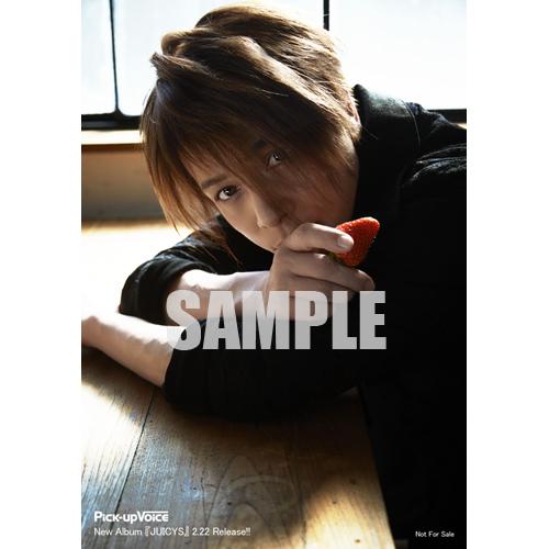 Pick-upVoice vol.109 特典:高橋直純 オリジナルフォト付き