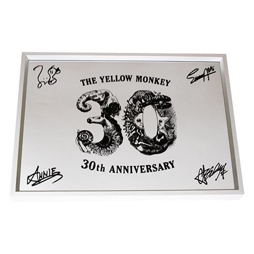 30th Anniversary ウォールミラー